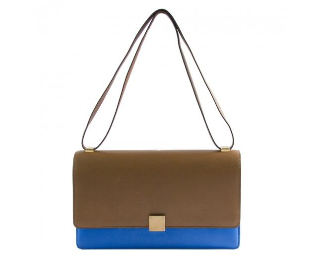 Céline Bicolor Medium Case