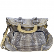 D&G Bolso Miss Pocket Serpiente