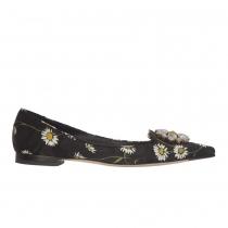 D&G Zapatos Daisy Brocade Joya T 38